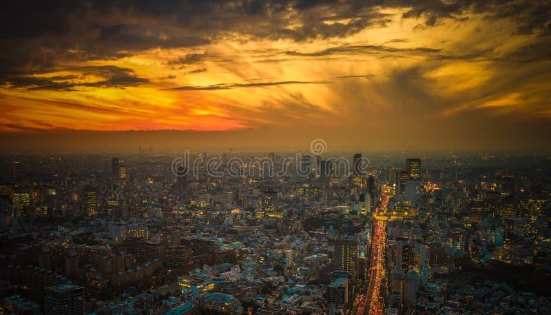 Panoramautsikt för Tokyo solnedgångantenn royaltyfri bild