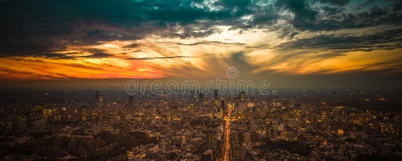 Panoramautsikt för Tokyo solnedgångantenn arkivfoton