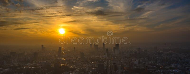 Panoramautsikt för Tokyo solnedgångantenn royaltyfria foton