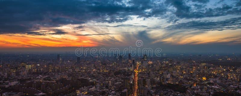 Panoramautsikt för Tokyo solnedgångantenn royaltyfria bilder