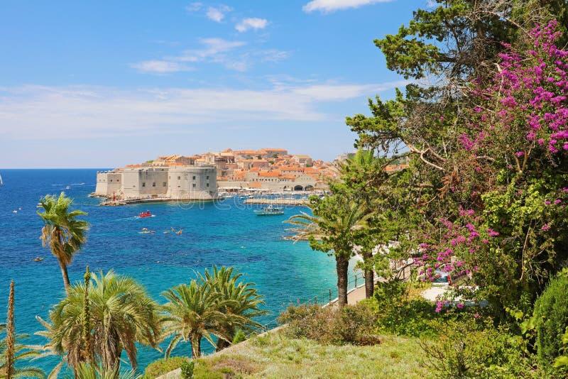 Panoramautsikt från terrass för blommaträdgård på Dubrovnik den gamla stadfjärden, Kroatien arkivfoto