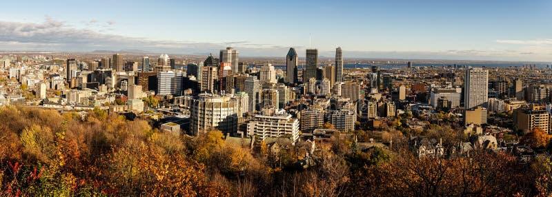 Panoramautsikt på i stadens centrum Toronto royaltyfria bilder
