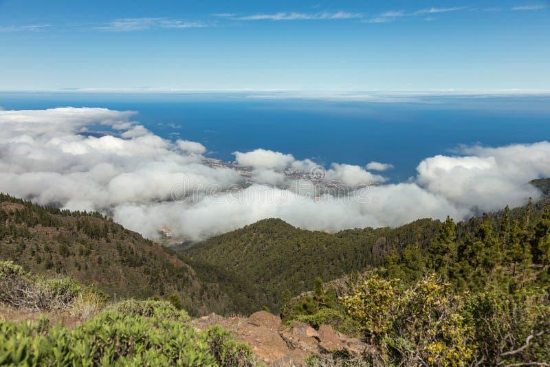 Panoramautsikt till den Puerto de la Cruz och Orotava dalen Ovanför fluffiga moln för wight, klar blå himmel och den lilla delen  arkivfoto