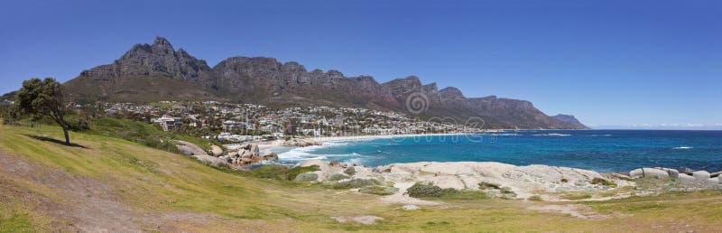 Panoramautsikten av läger skäller stranden i Cape Town, Sydafrika, med grönt gräs, lonaly trädet och de tolv apostlarna royaltyfri bild