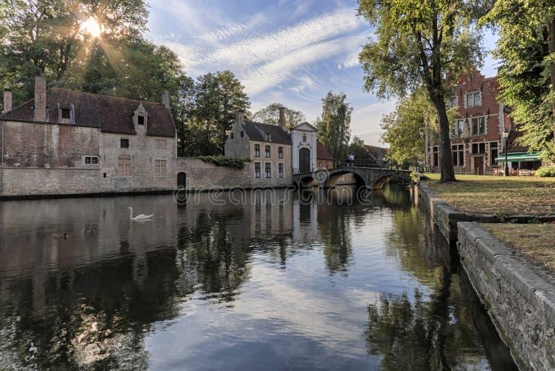 Panoramautsikten av Minnewater parkerar med härliga vita svanar i vårafton i medeltida del av Bruges Brugge, Belgien royaltyfria bilder