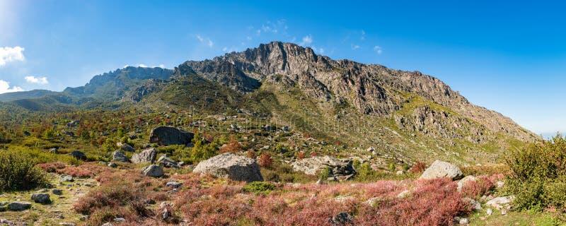 Panoramautsikten av Monte Cardo lokaliserade i det regionala naturligt parkerar av Korsika royaltyfria foton
