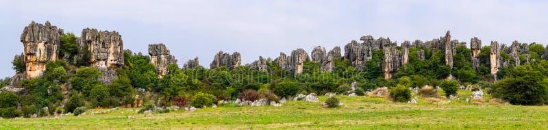 Panoramautsikten av Shilin kalkstenhöjdpunkter stenar skogen - Yunnan, Kina royaltyfri fotografi