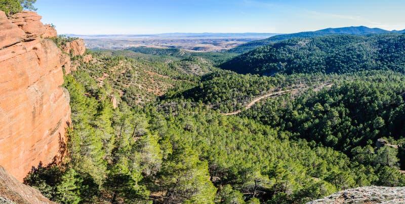 Panoramautsikten i Pinares del naturliga Rodeno parkerar, Spanien arkivbilder