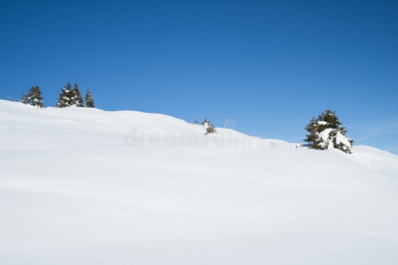Panoramautsikten snöar ner den dolda dalen i alpin bergskedja med barrträdet sörjer träd royaltyfri fotografi