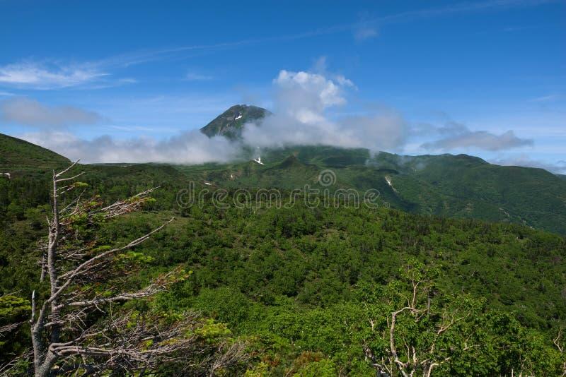 Panoramautsikter från den gröna Shiretokoen passerar runt om Mount Rausu i den Shiretoko nationalparken royaltyfri foto