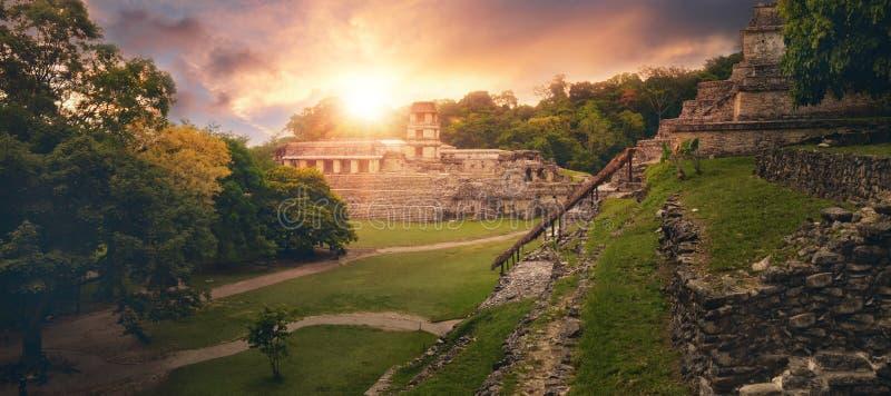 Panoramautsiktpyramiden av Palenque. arkivbilder
