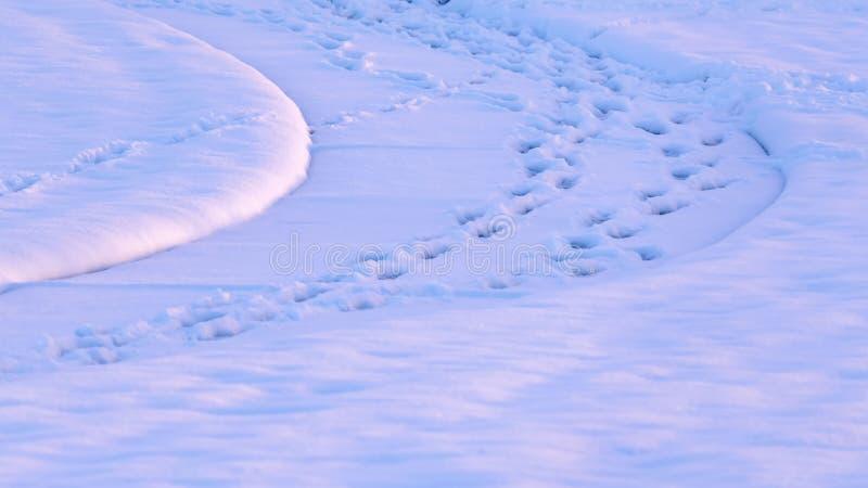 Panoramavoetafdrukken op een sneeuw behandelde weg in Eagle Mountain Utah worden gestempeld dat stock foto's