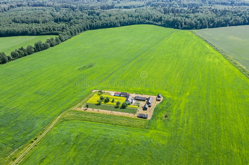 Panoramic aerial view of summer green cultivated fields, farm and forest royalty free stock photography