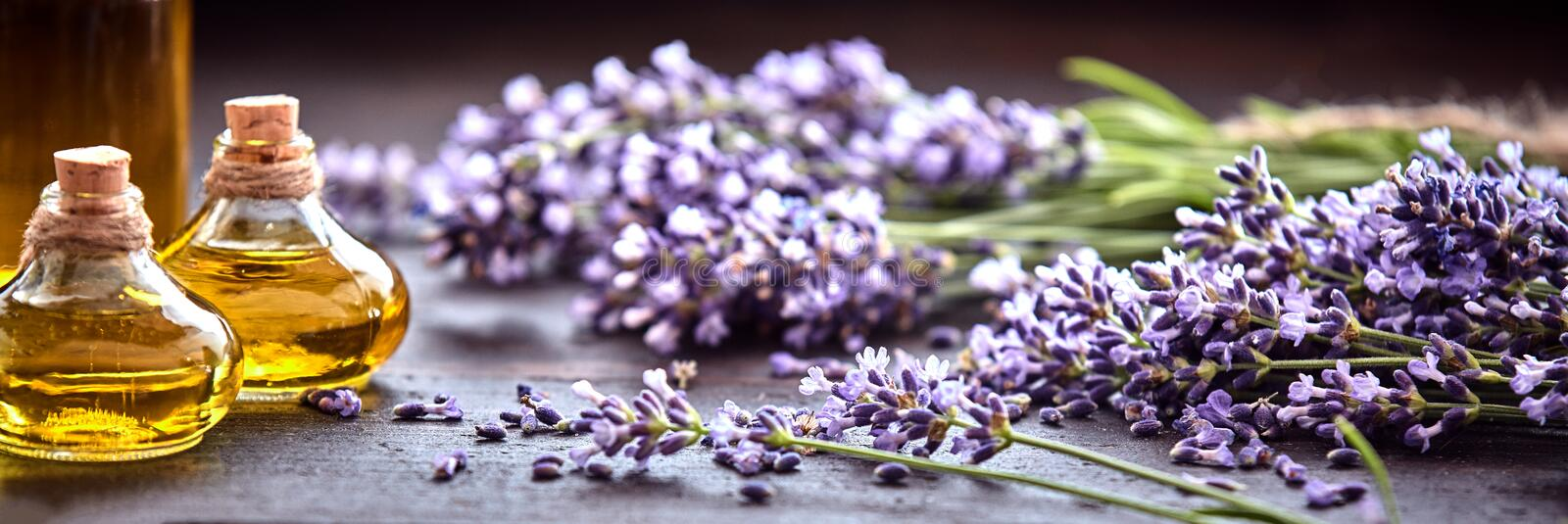 Panoramic banner of lavender with essential oil. Panoramic banner or header of fresh purple lavender with flacons of essential oil for aromatherapy, alternate royalty free stock photography
