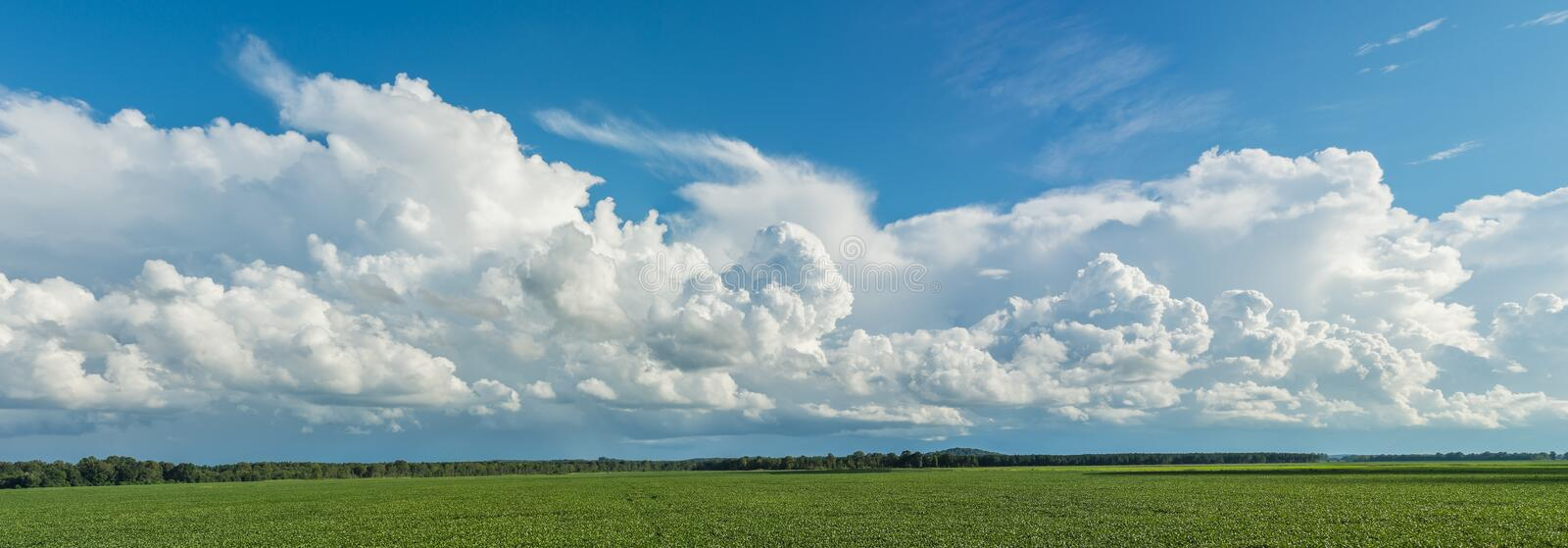 Cold Front Clouds Panorama Background. Panoramic capture of cold front and clouds moving in over a southern soybean field stock photography