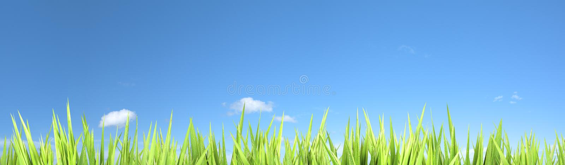 Panoramic Eco Background Royalty Free Stock Photo