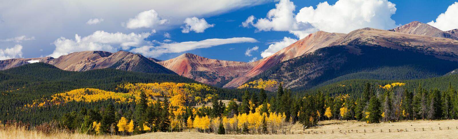 Panoramic Fall Landscape Colorado Rocky Mountains. Panoramic Fall Landscape with a Colorful Forest of Golden Aspen Trees in the Colorado Rocky Mountains royalty free stock photo