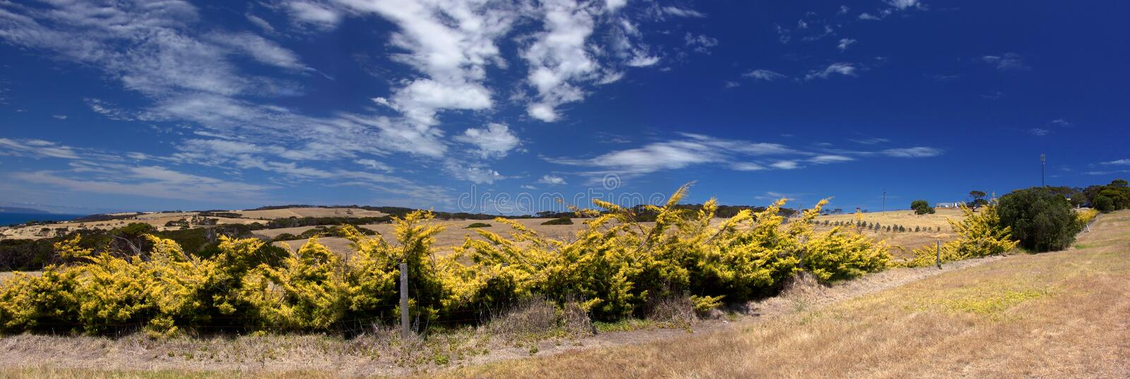Download Panoramic Fields stock photo. Image of country, panoramic - 463562