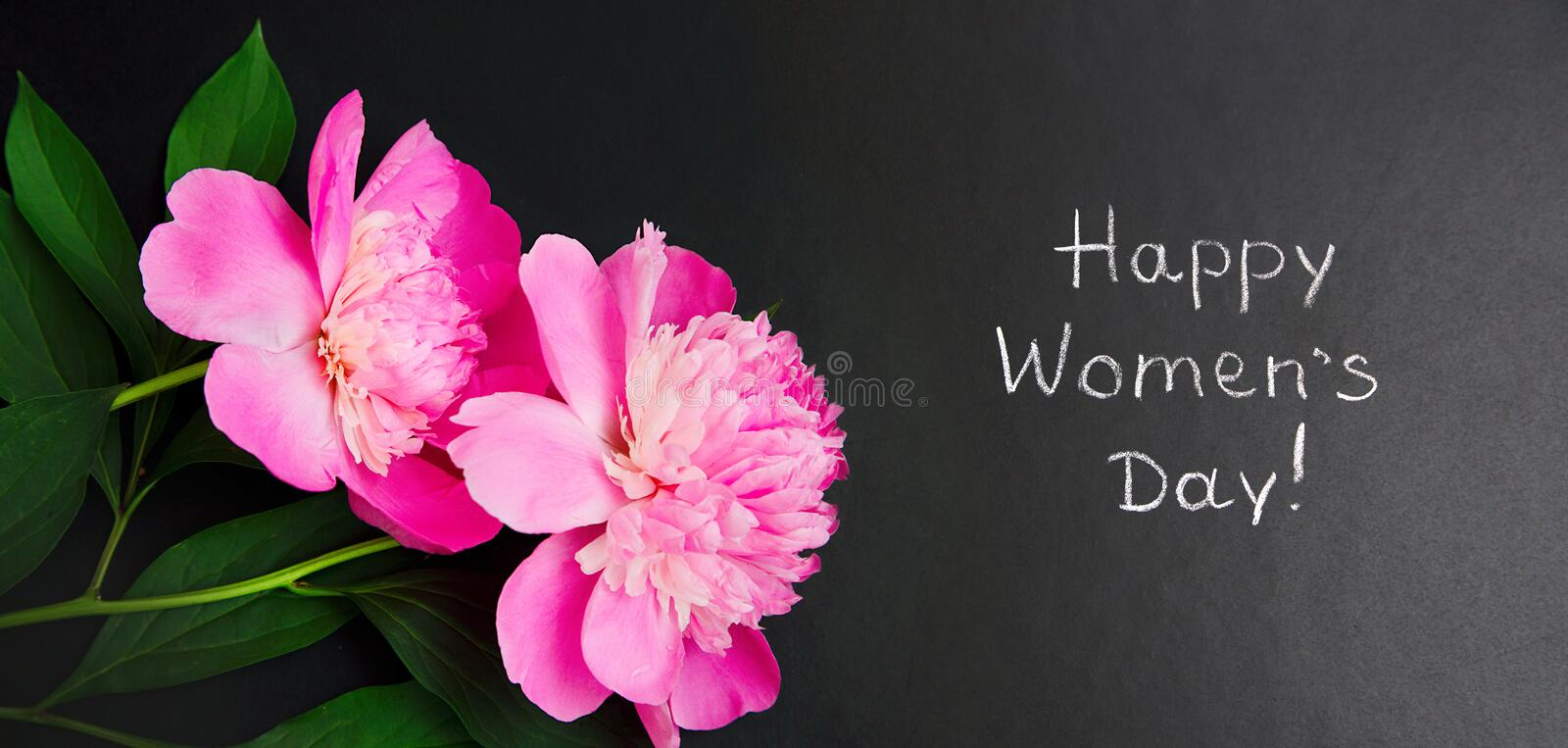 Panoramic greeting card 8 March Happy Women`s Day. Blackboard with Pink peony flowers and text Happy Women`s Day written by chalk on black background. Top view royalty free stock images