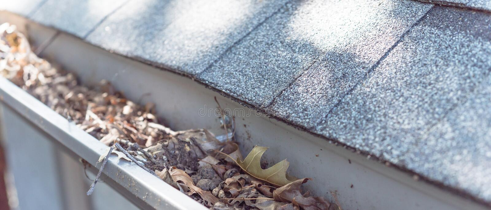 Panoramic gutter clogged by dried leaves and messy dirt need clean-up. Panorama view gutter near roof shingles of residential house full of dried leaves and royalty free stock images