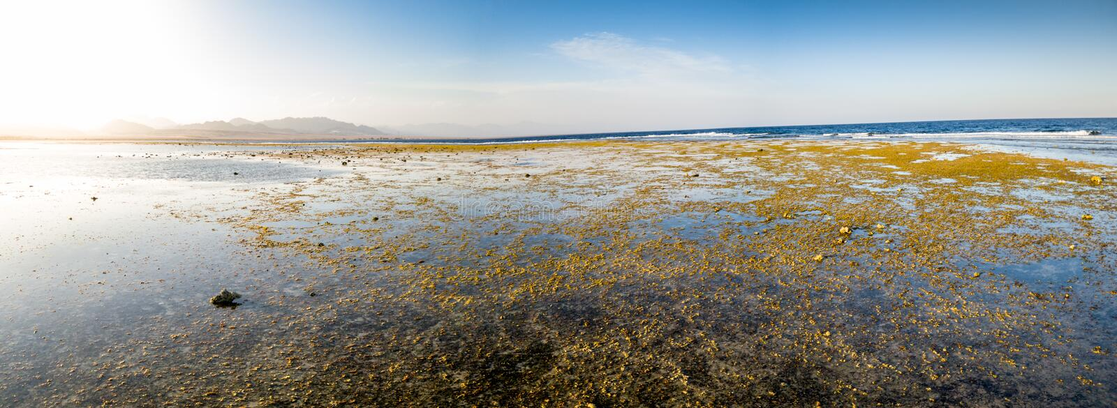 Panoramic photo of corals and rocks on the ocean coast. Mountains and blue sky on the background royalty free stock photo