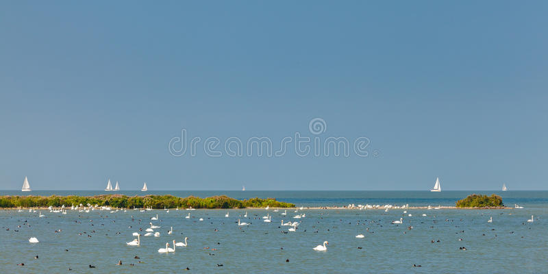 Panoramic image of the IJsselmeer lake in The Netherlands stock images