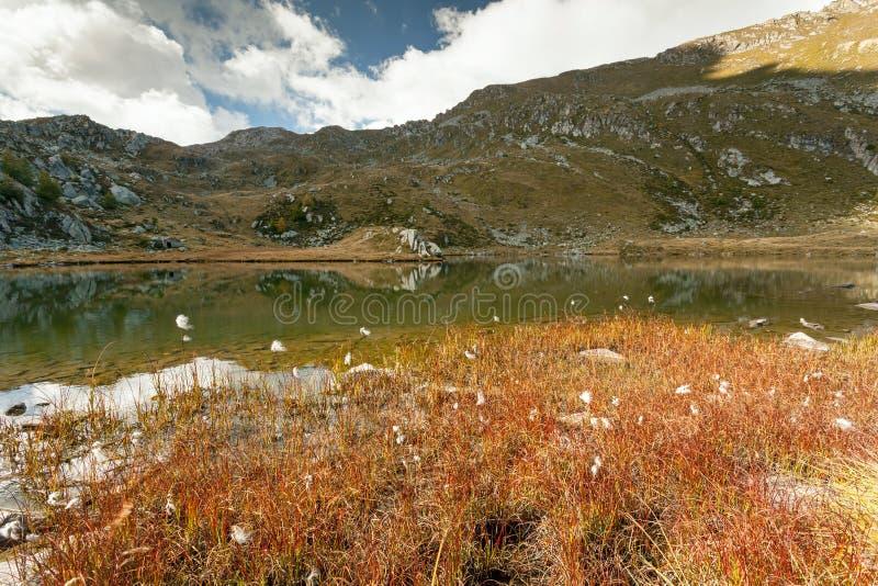 Panoramic of Lake of Arcoglio - Valtellina IT. Lake of Arcoglio - Valtellina IT royalty free stock images