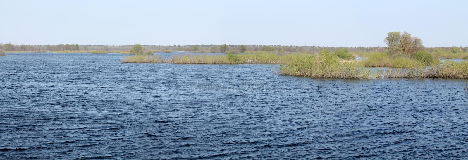 Panoramic landscape with spring flooding of Pripyat River near Borki, Zhytkavichy District of Gomel Region of Belarus royalty free stock photos