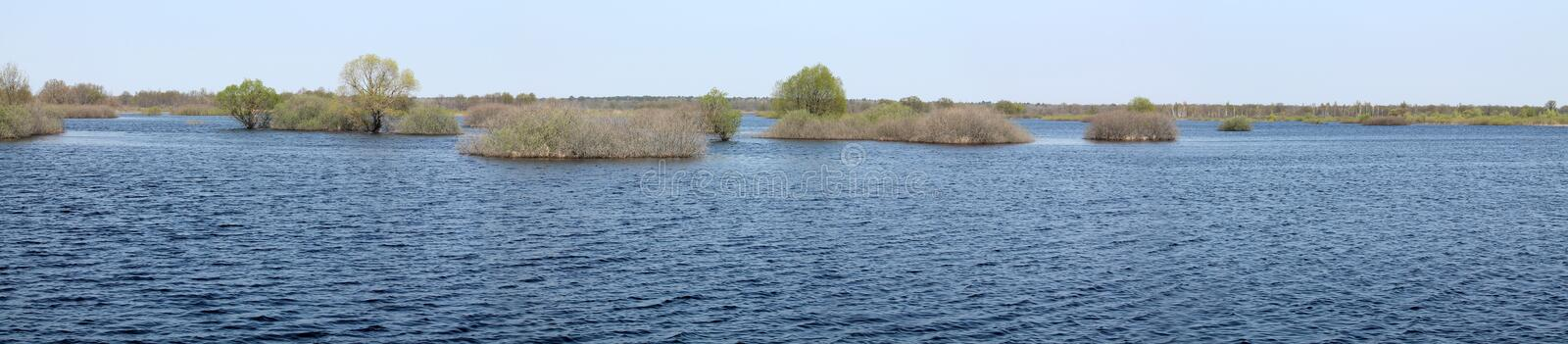 Panoramic landscape with spring flooding of Pripyat River near Borki, Zhytkavichy District of Gomel Region of Belarus. Panoramic landscape with spring flooding stock images