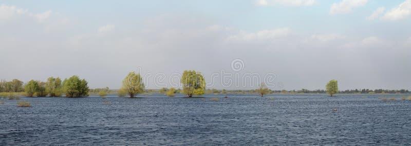 Panoramic landscape with spring flooding of the Pripyat River near Turov, Belarus. Panoramic landscape with spring big flooding of the Pripyat River near Turov stock photo