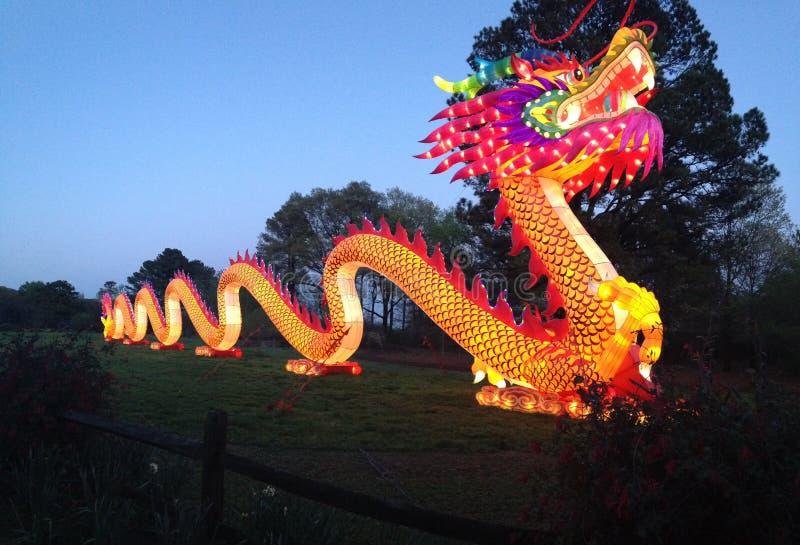 Panoramic Light Up Dragon royalty free stock photography