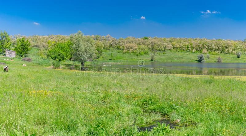 May landscape with Suha Sura river in Vasylivka village near Dnepr city, central Ukraine stock images