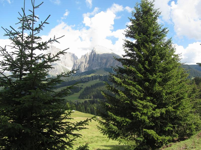 Panoramic mountain view of the italian Dolomites at summer . South Tyrol , Bolzano , Italy stock images