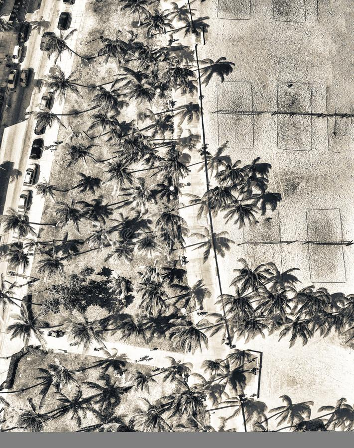 Free Panoramic Overhead View Of Miami Beach Lummus Park And Ocean Drive As Seen From Drone Royalty Free Stock Image - 115383396