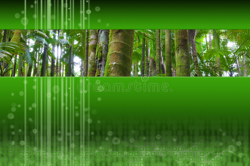 Download Panoramic Palm Forest Inset On Green Modern Design Stock Illustration - Image: 11127033