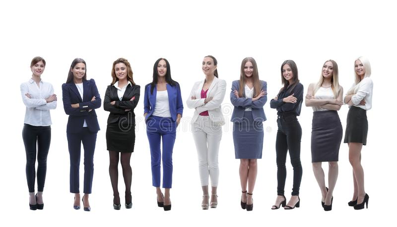 Panoramic photo of a big business team standing together. Isolated on white background stock photography