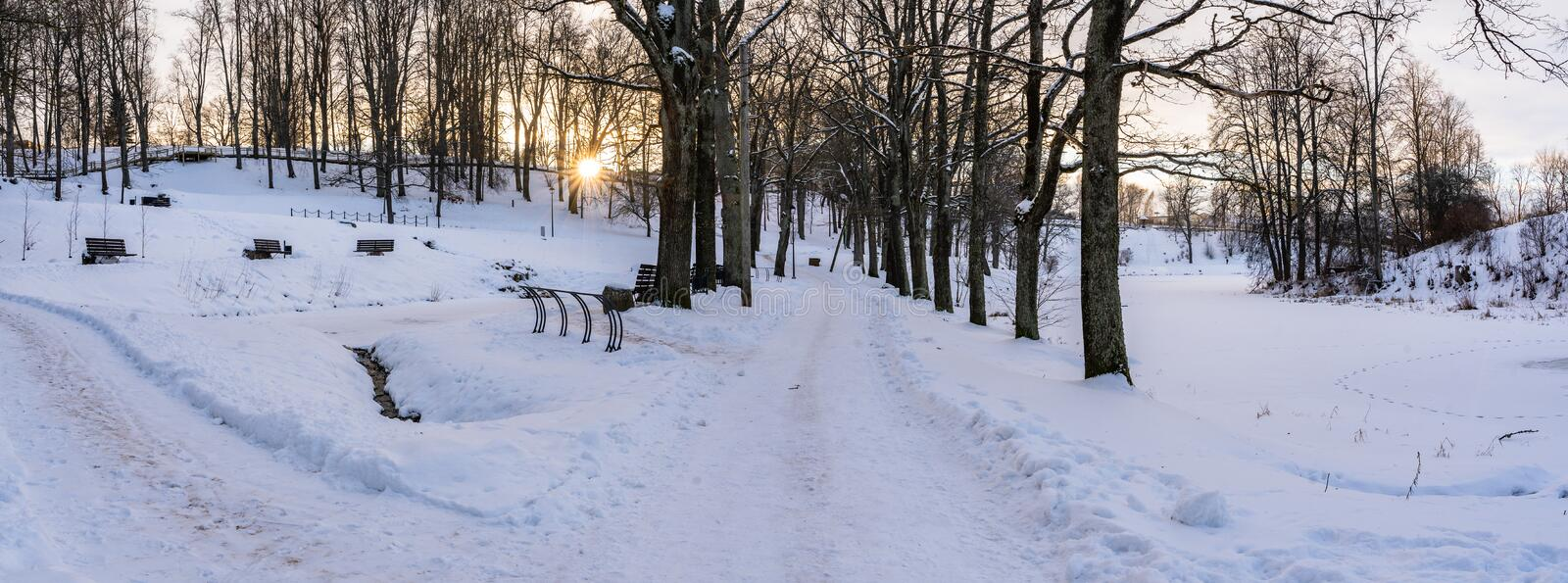 Panoramic Photo of an Empty Walkway in Park in Alley on Sunny Winter Evening royalty free stock photos