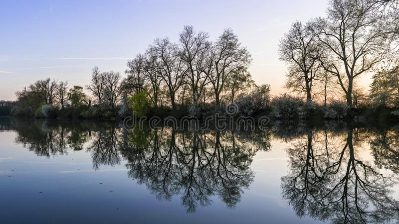 Panoramic Photo of Green Trees Near River at Noontime royalty free stock photos