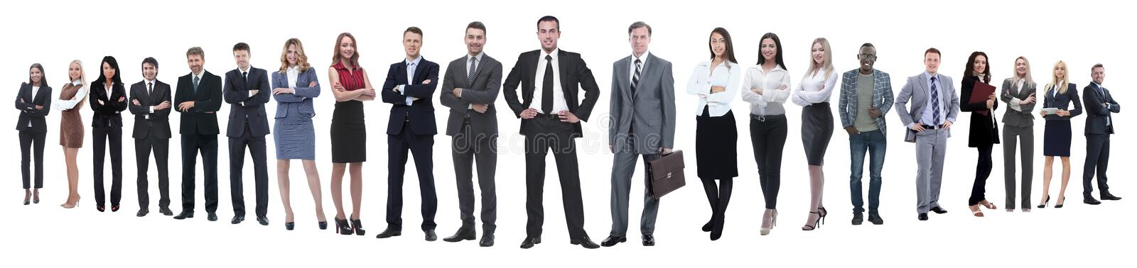 Panoramic photo of a professional numerous business team royalty free stock photos
