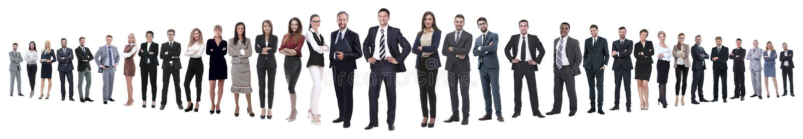 Panoramic photo of a professional numerous business team royalty free stock images