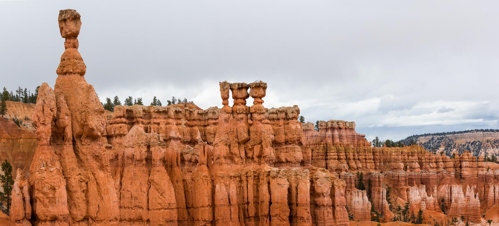 Panoramic photograph of Bryce Canyon with Thor's Hammer. Bryce Canyon in panoramic photograph with Thor's Hammer royalty free stock photos