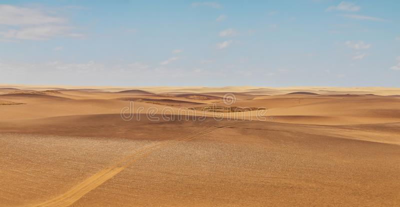 Panoramic Photograph of the Namibe Desert. Coast line with desert dunes. Africa. Angola. Namibe. Africa stock photo