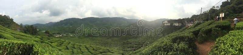 Panoramic Photography Of Green Mountain Range Free Public Domain Cc0 Image