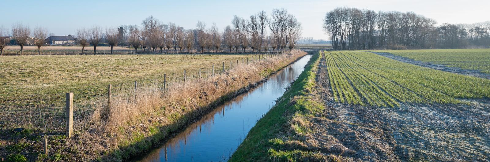 Panoramic picture of fields separated by a ditch stock image