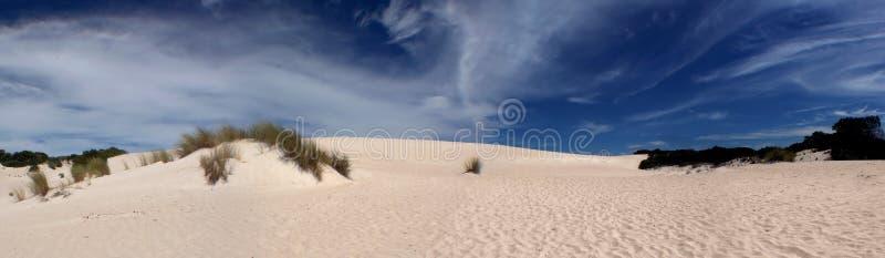 Download Panoramic Sand Dune stock image. Image of australia, little - 463563