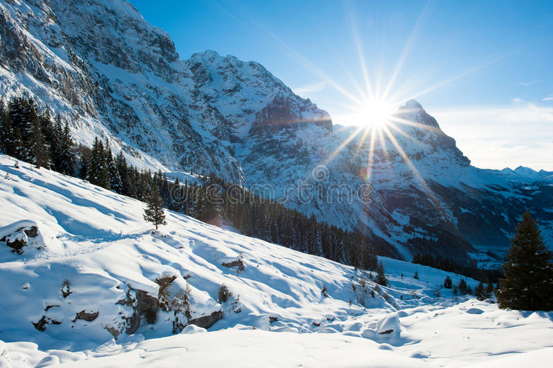 Download Panoramic Scenery Above Grindelwald Stock Image - Image: 28592971