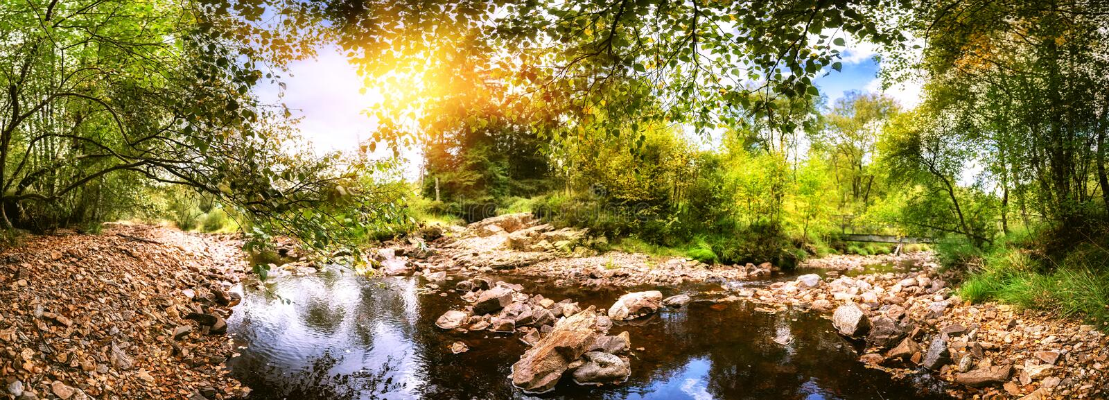 Panoramic summer landscape with forest stream stock images
