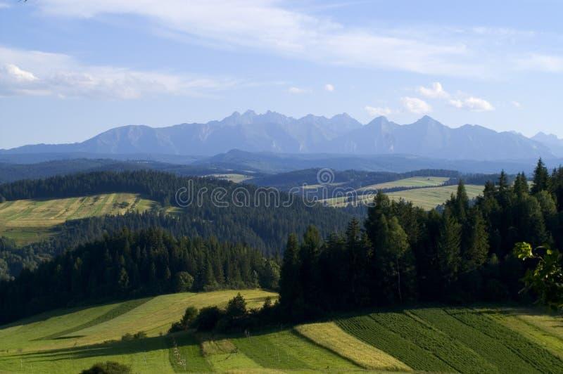 Panoramic Tatra Mountain royalty free stock photos