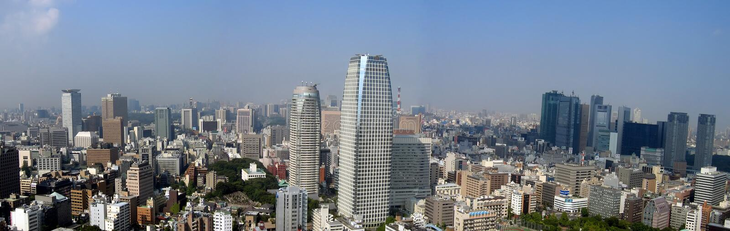 panoramic tokyo view στοκ εικόνα με δικαίωμα ελεύθερης χρήσης