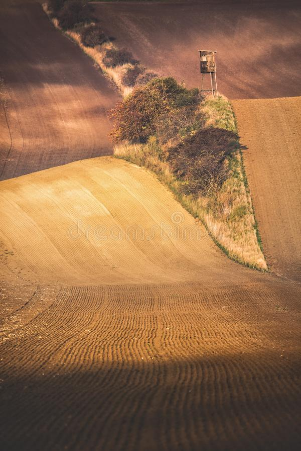 Panoramic vertical view Of beautiful wavy fields with hunting tower in autumn. Agricultural landscape concept with lonely tower in royalty free stock images